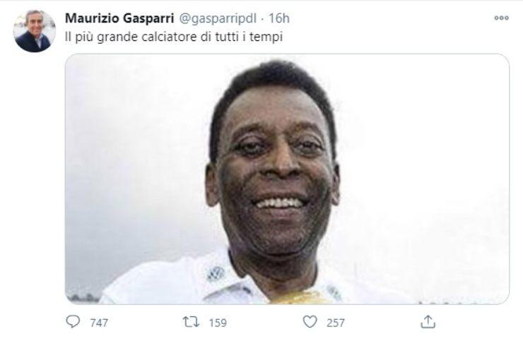 Morte Maradona Gasparri