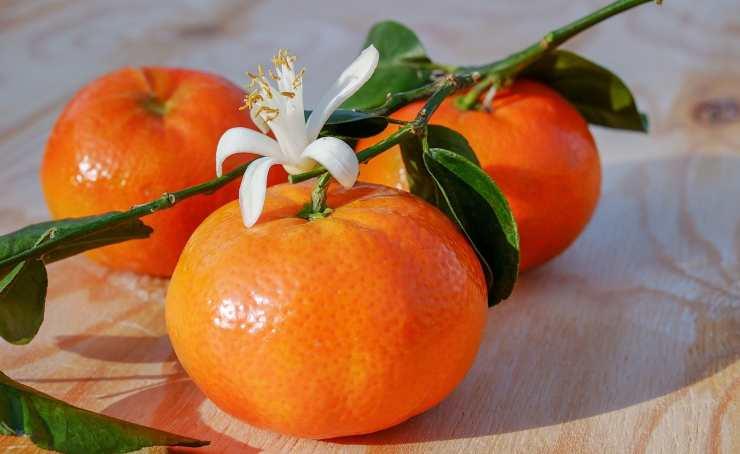 Ricette al mandarino