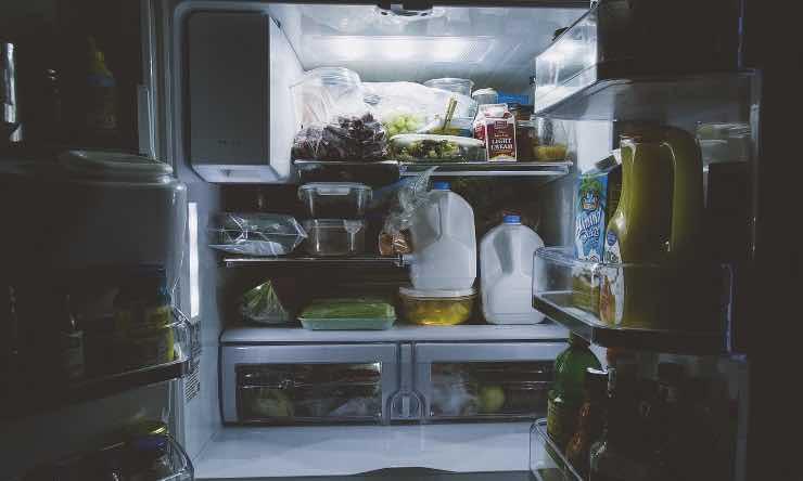 Conservare avanzi cibo