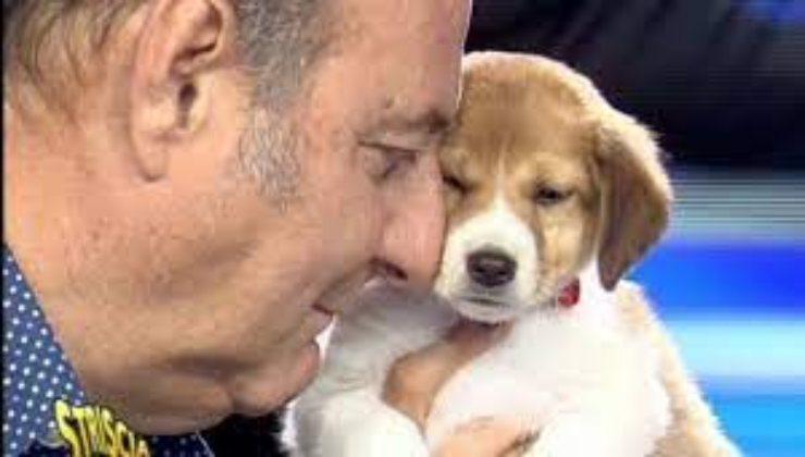 I cani di Striscia la Notizia-AltraNotizia